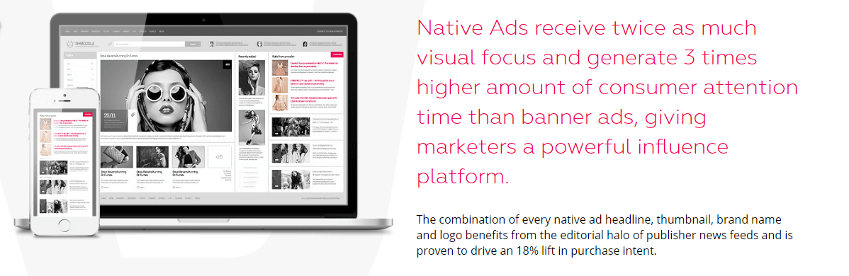 adnow-advertisers-review